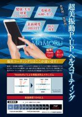 mamoru_3_HP